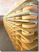 de oude kaasmakerij_käse quer